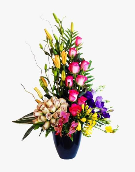 Delicia floral