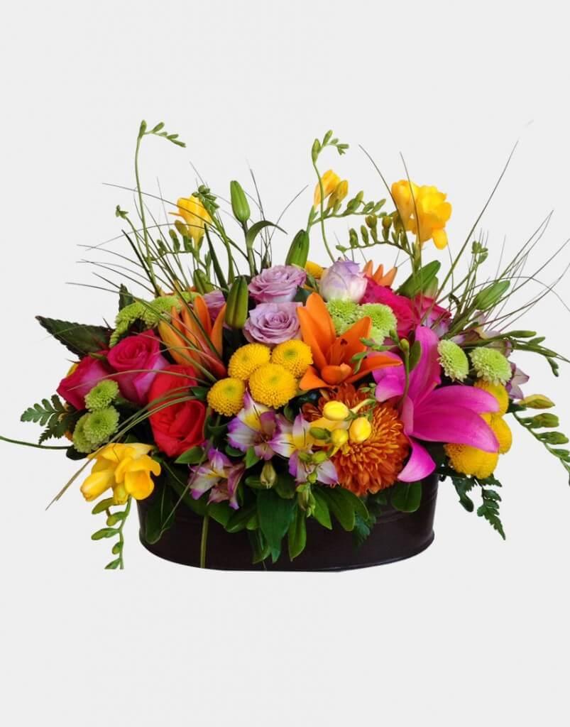 Diversión floral